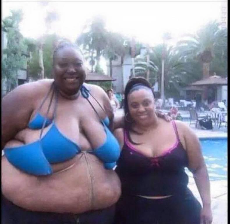 Bikini pics Funny